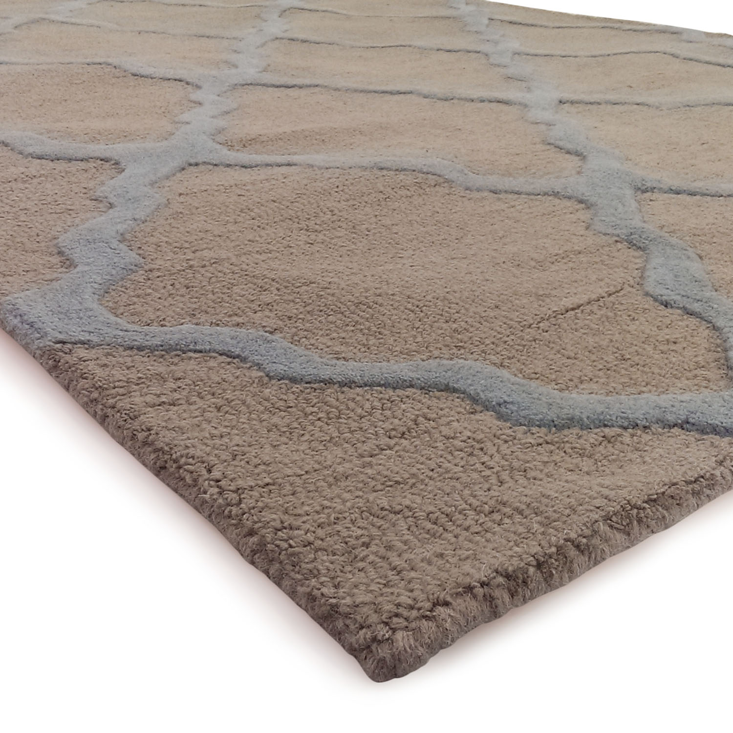 nuLOOM Varanas Collection Rug / Rugs