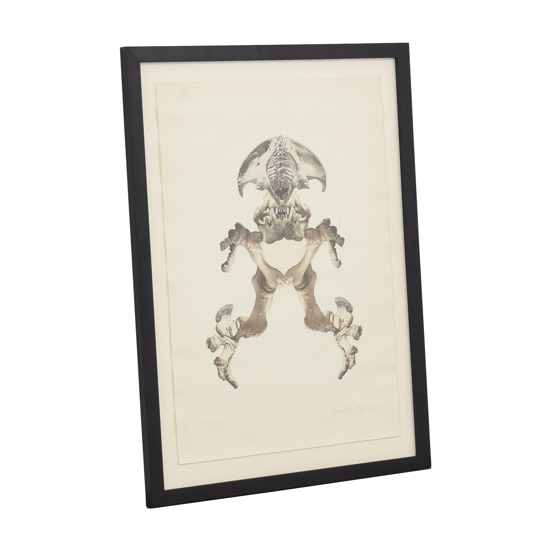 Bones Wall Art for sale