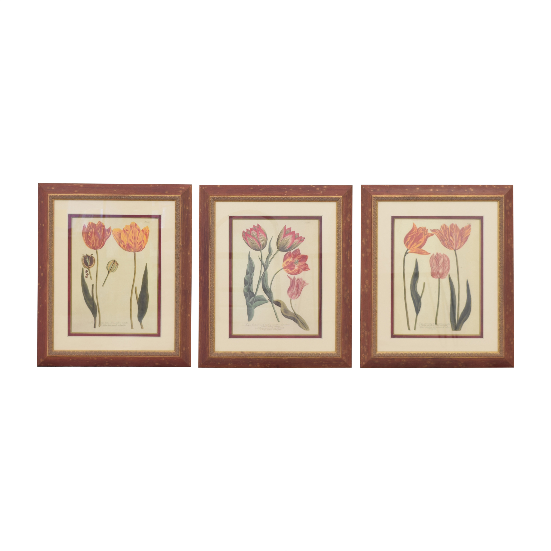 Three Tulip Prints Wall Art