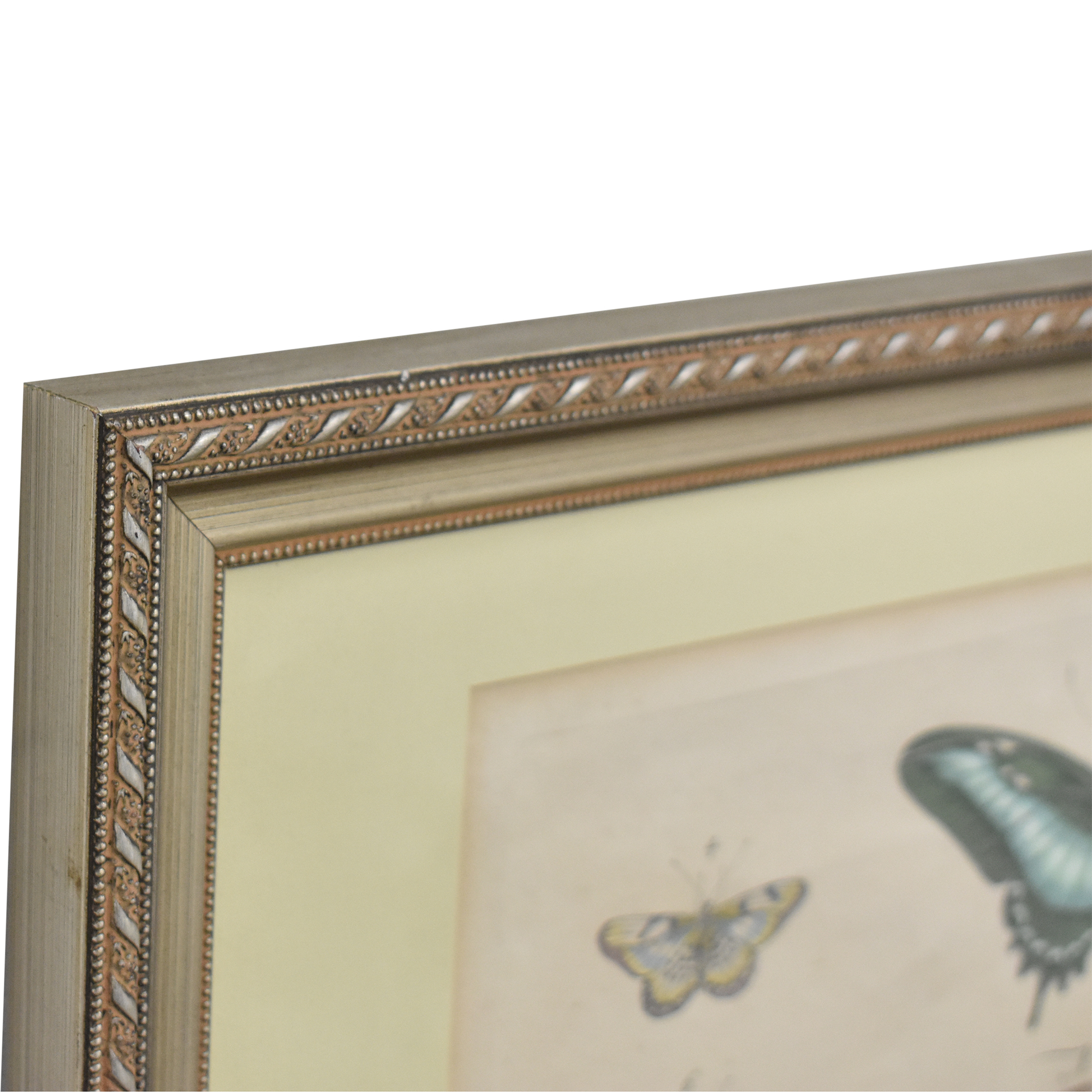Butterfly Wall Art for sale