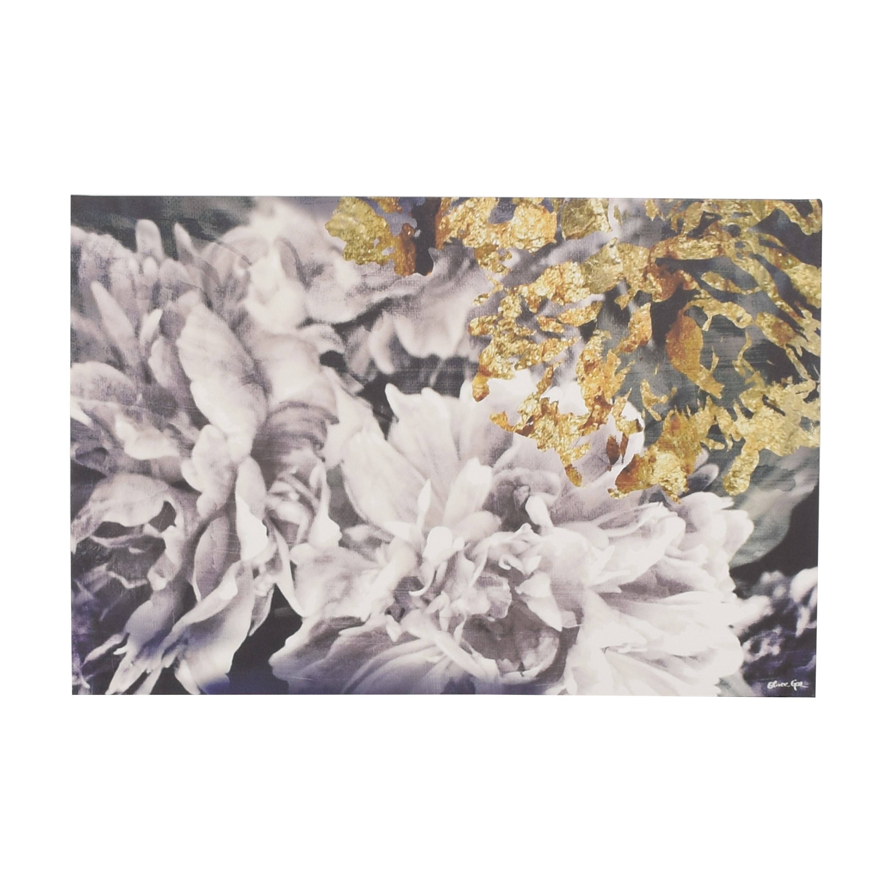Oliver Gal Oliver Gal Dos Gardenias Canvas Wall Art dimensions