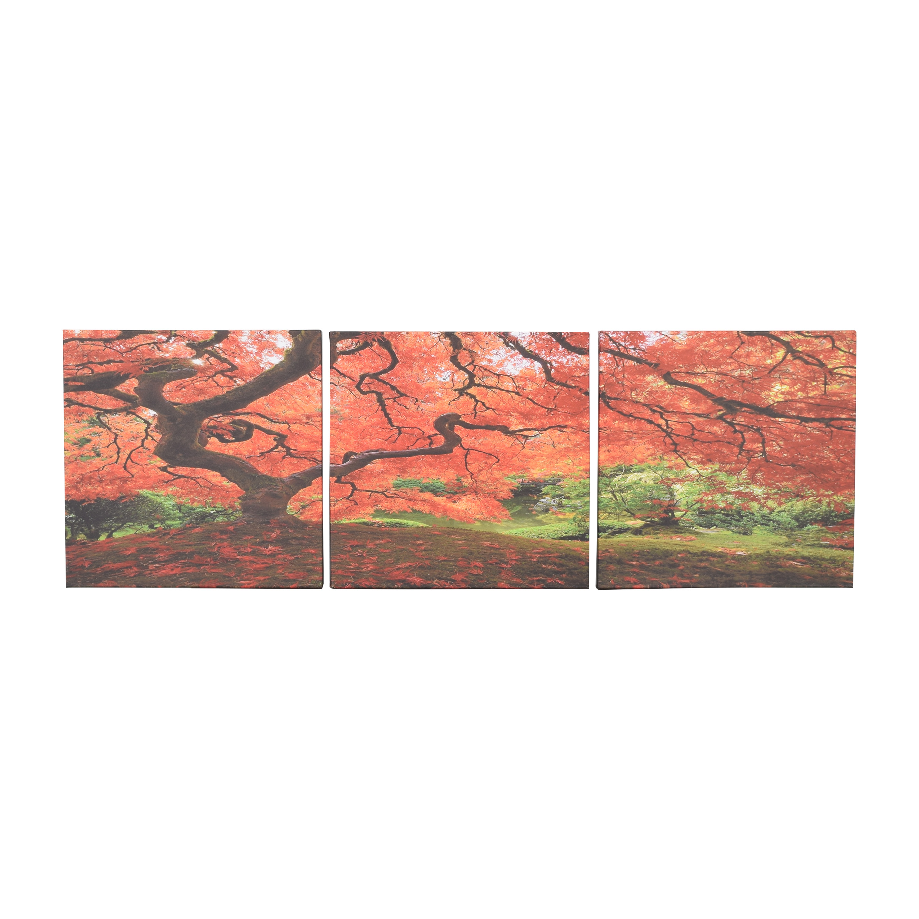Japanese Maple Wall Art Trio discount