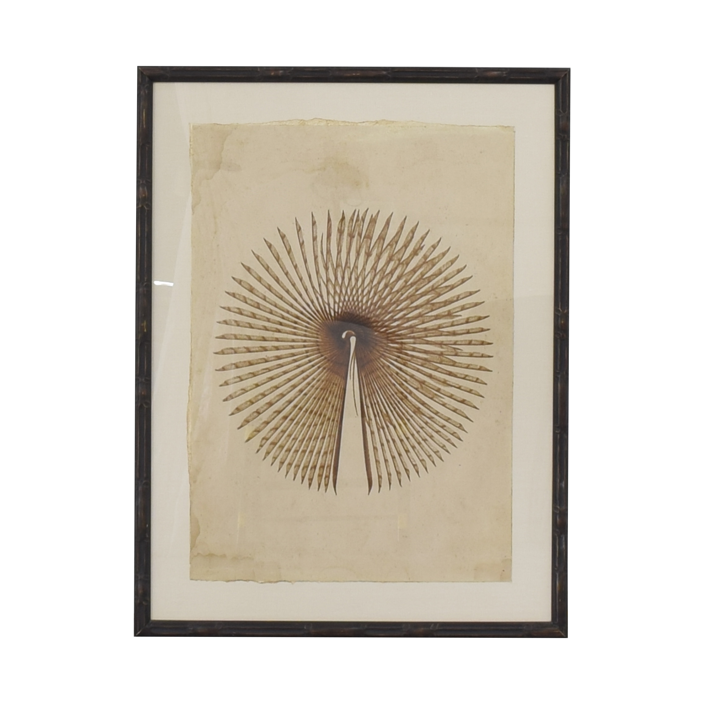 Natural Curiosities Natural Curiosities Framed Wall Art on sale