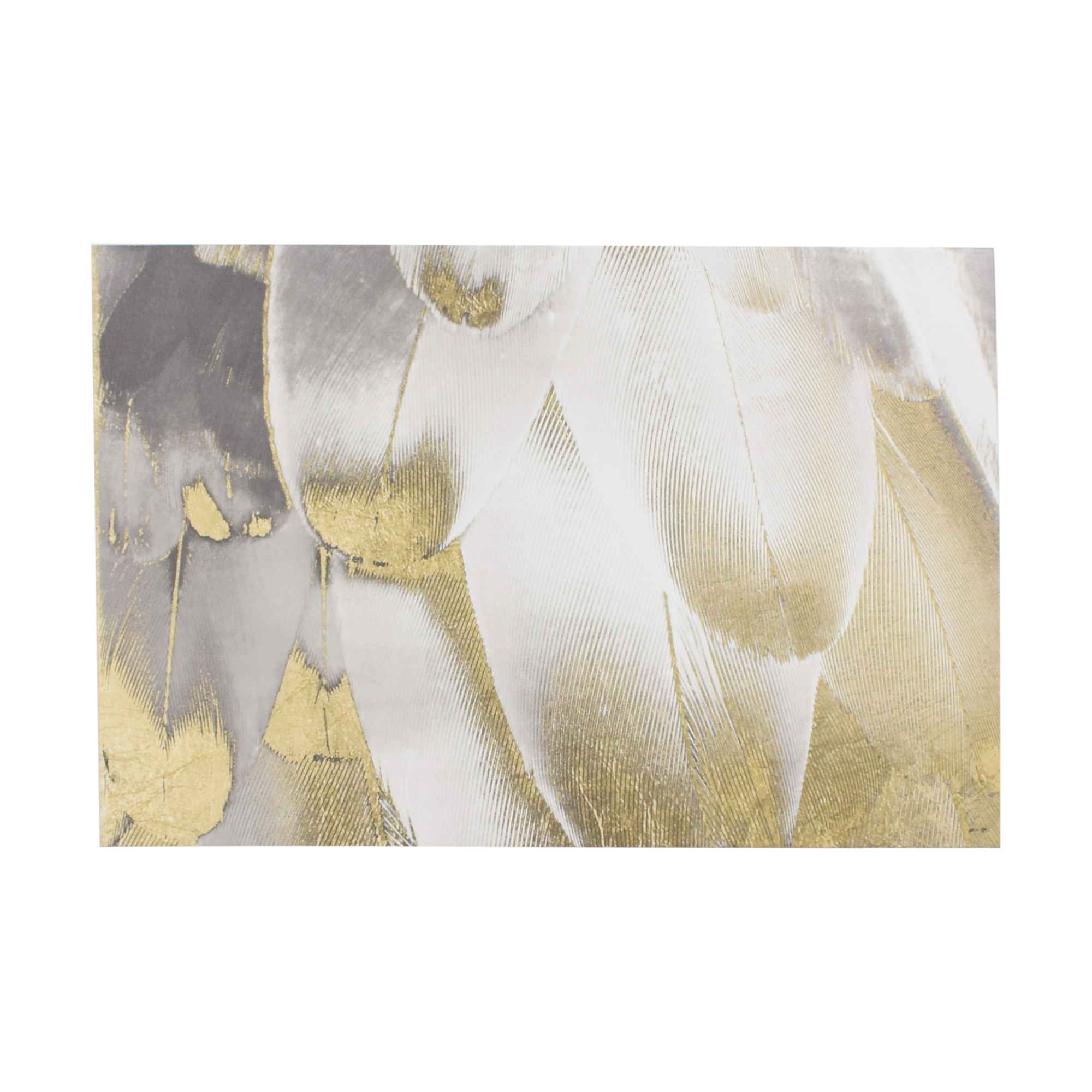 Oliver Gal Oliver Gal Royal Feathers Wall Art price