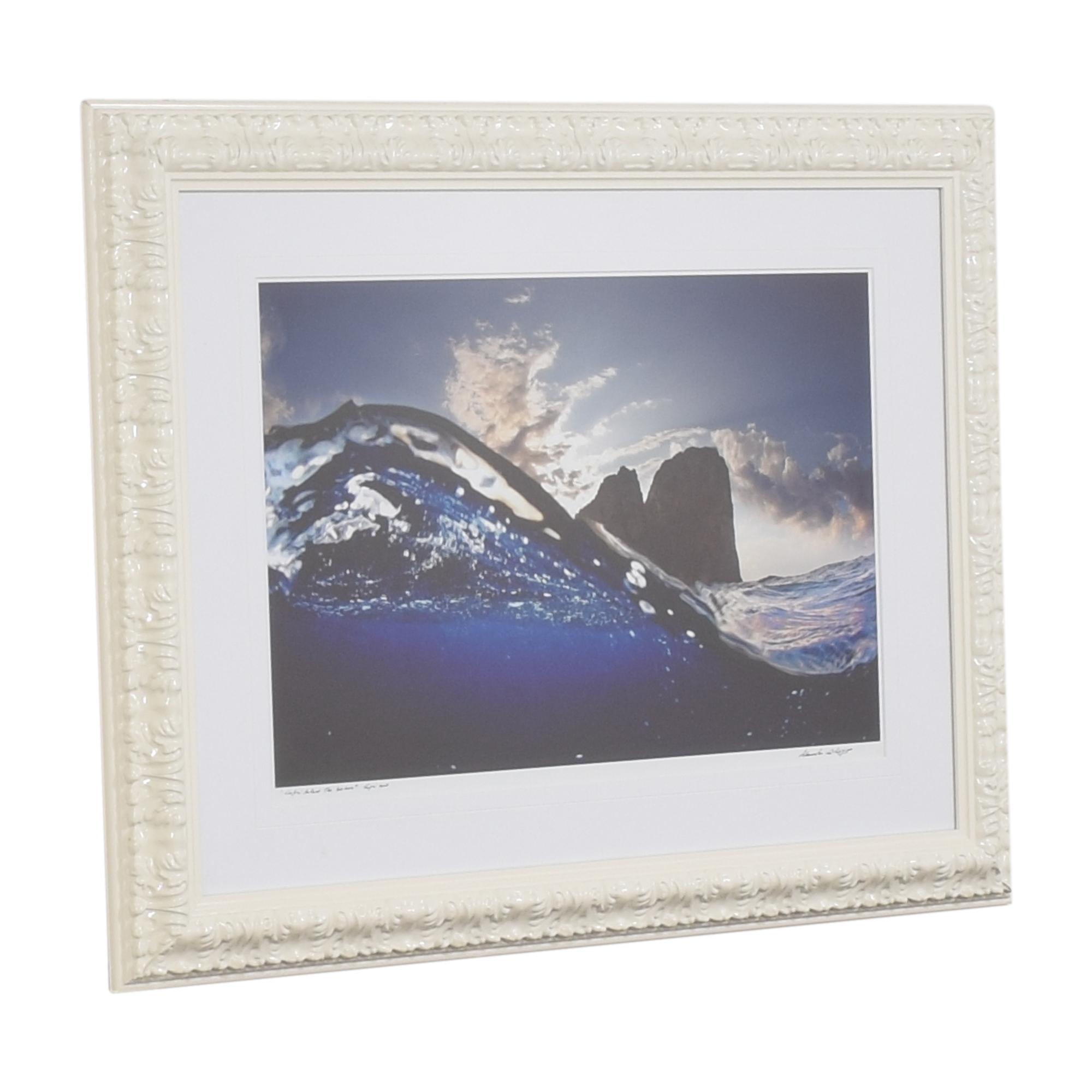 Atlantide Fine Art Gallery Alessandro Catuogno Framed Wall Art used