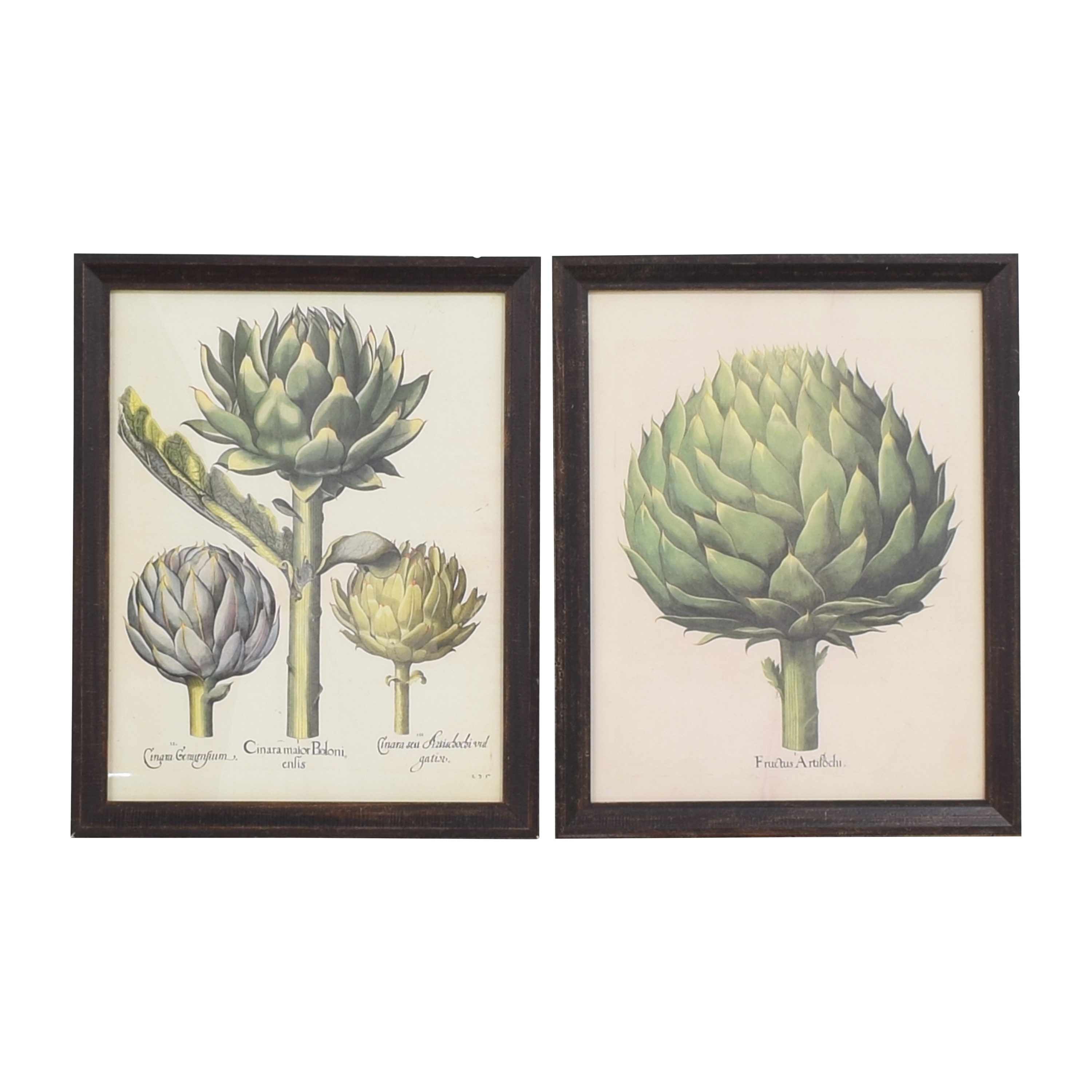 One Kings Lane Artichoke Prints Wall Art coupon