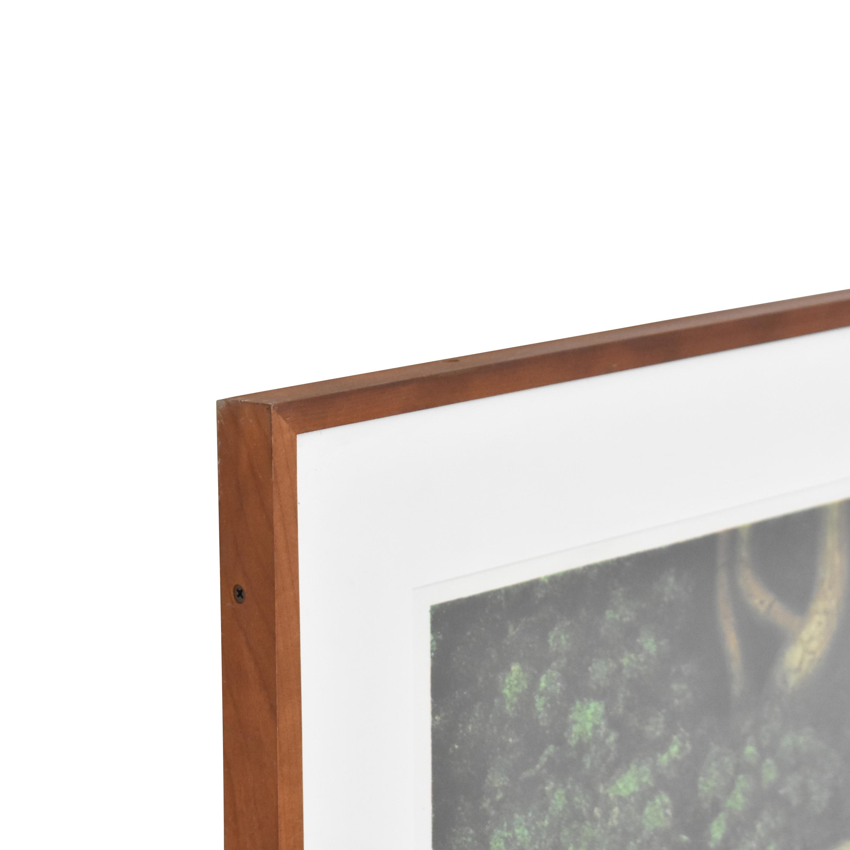 shop Hanna Kay Tree Roots II Framed Wall Art  Decor