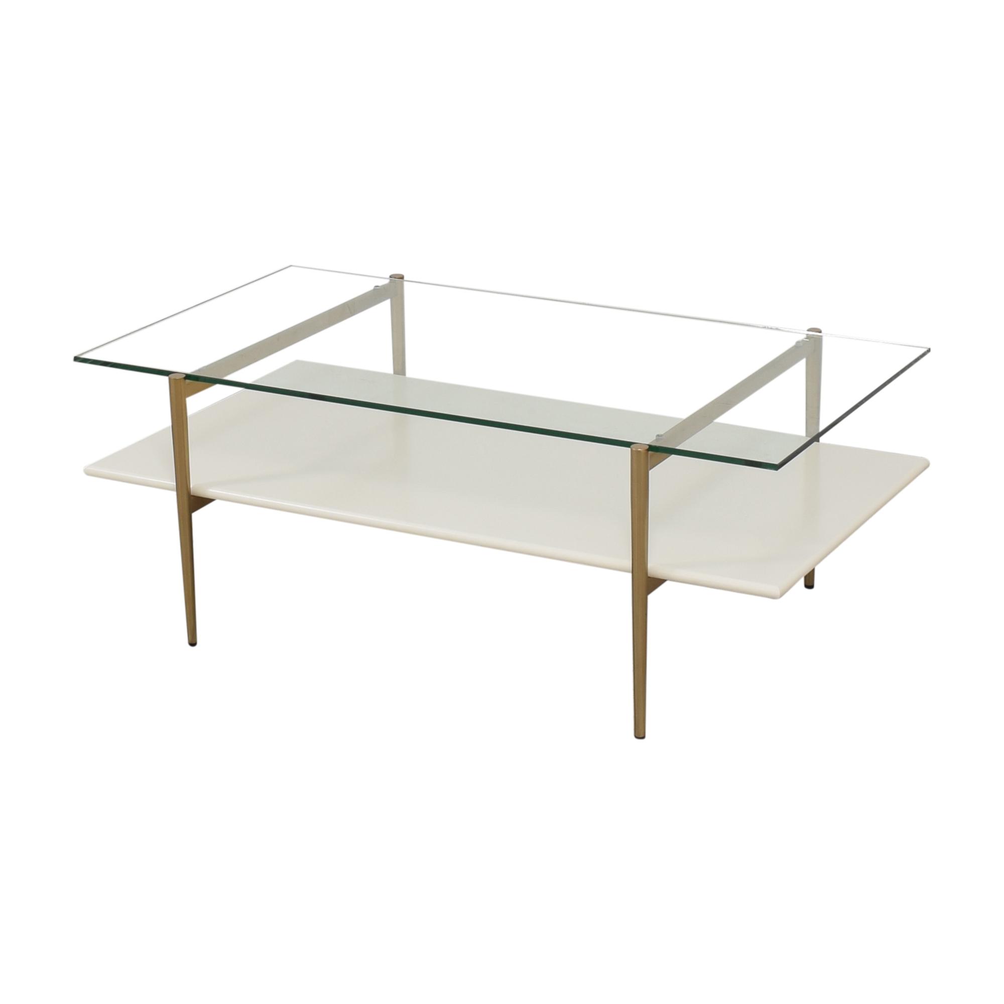 West Elm Mid Century Art Display Coffee Table / Coffee Tables
