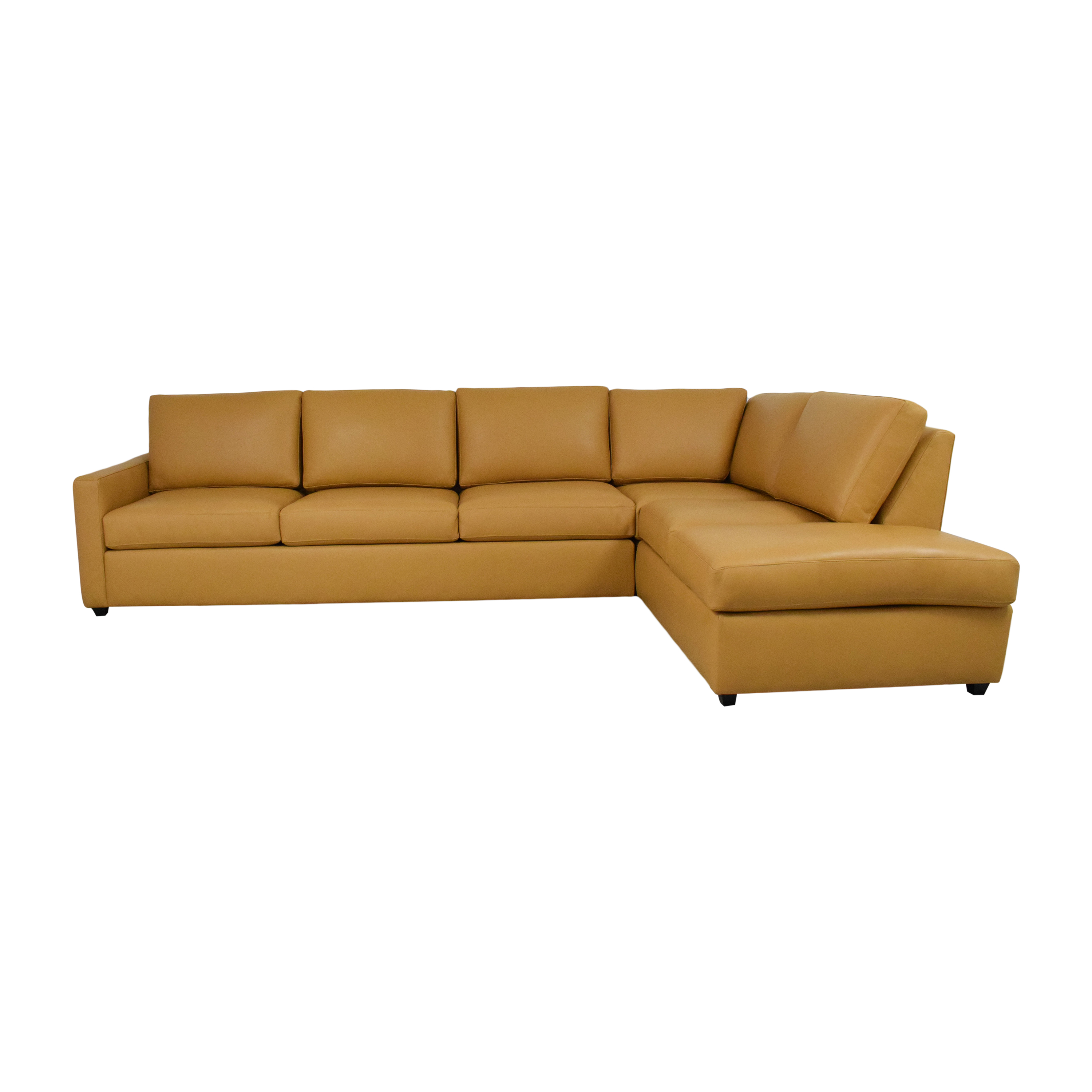 BenchMade Modern Couch Potato Lite Sectional with Bumper sale