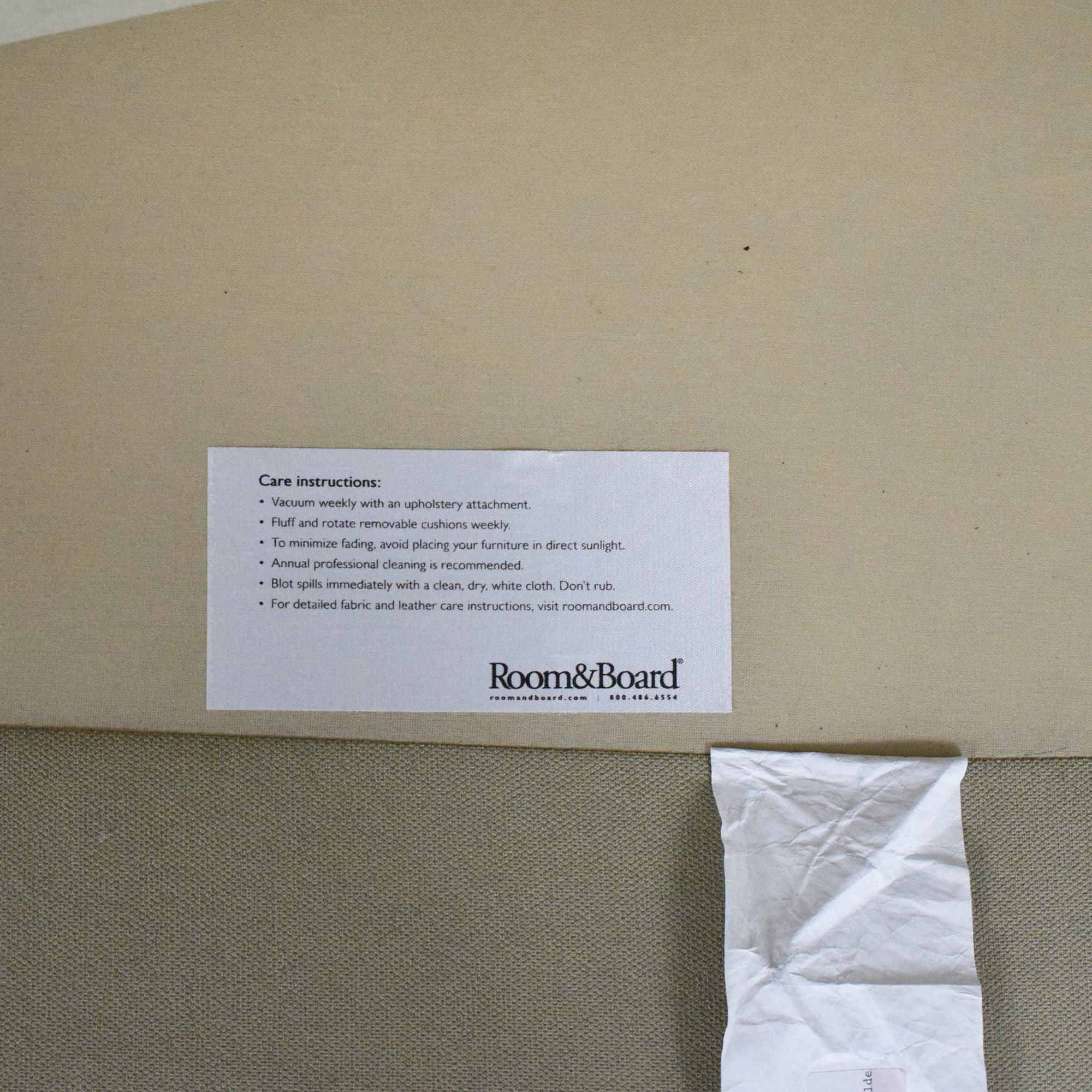 buy Room & Board Room & Board Ian Two Cushion Sofa online