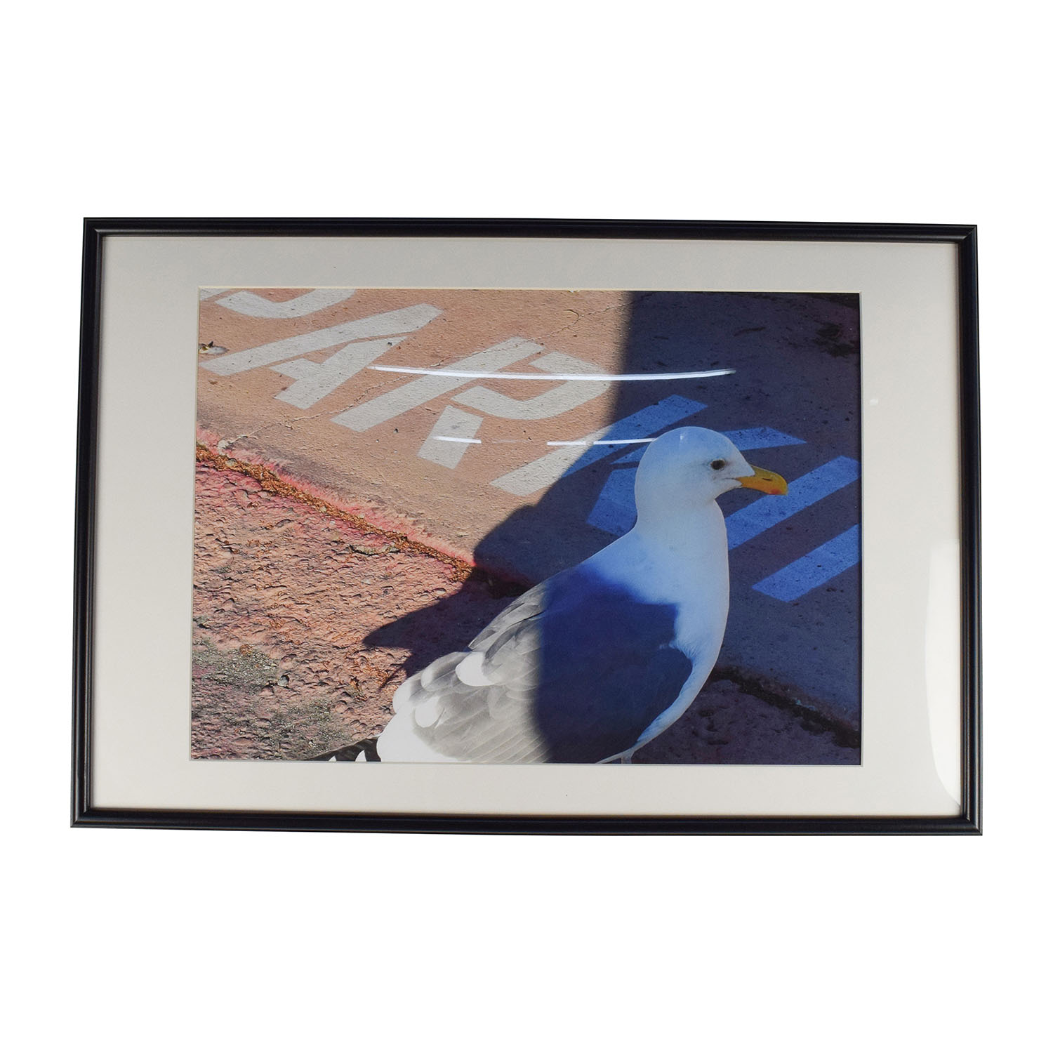 Seagull Picture Frame on sale