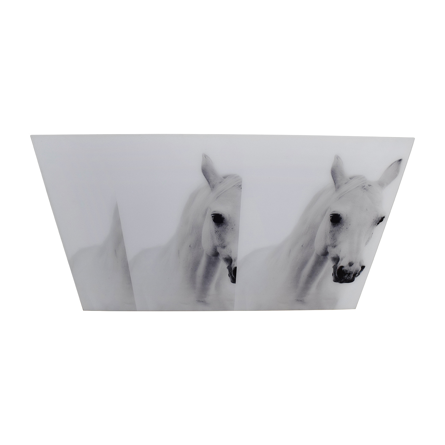buy Acrylic Horse Photography Art  Wall Art