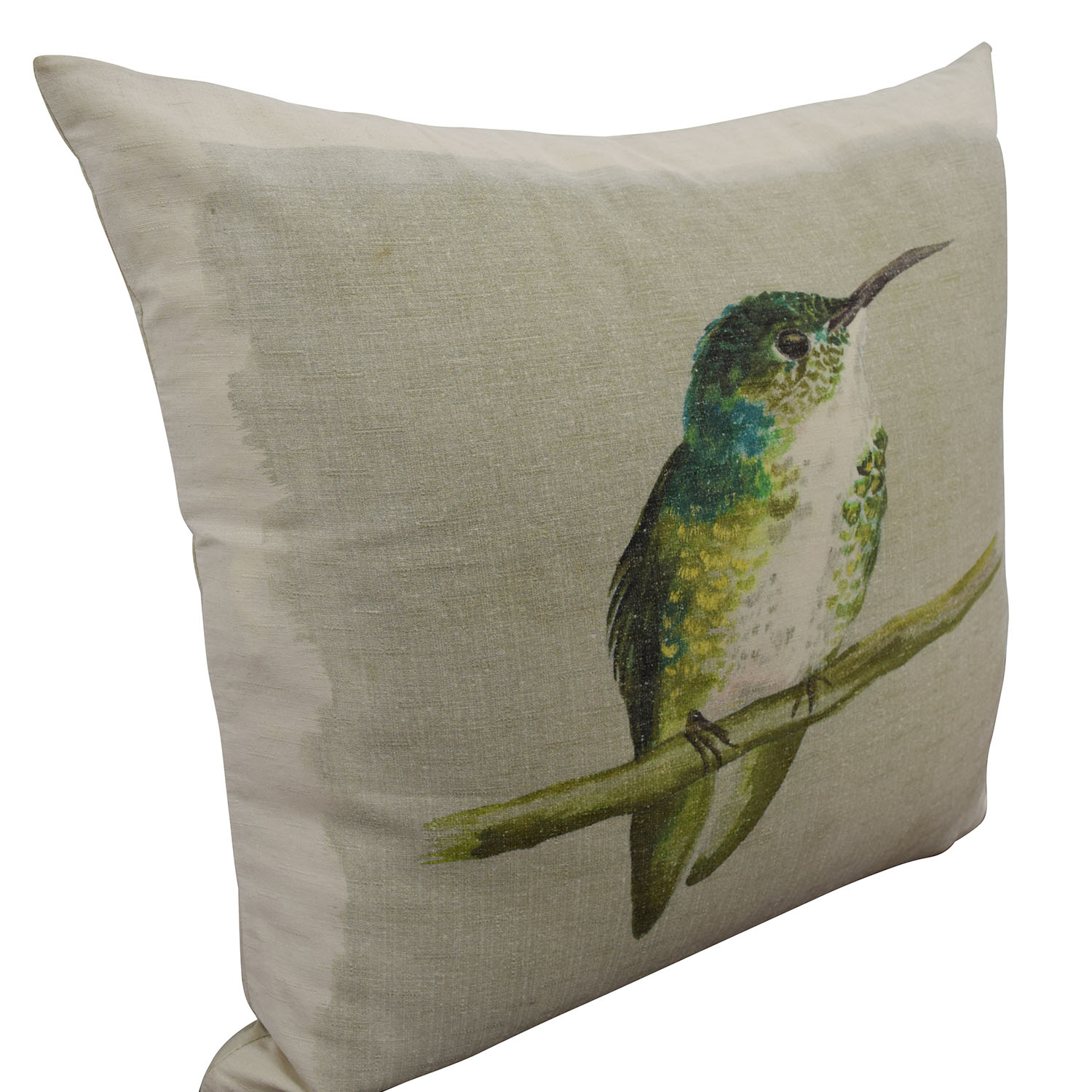 Hand Painted Bird on Beige Toss Pillow used