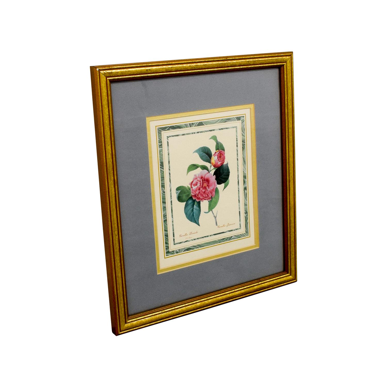 Scully & Scully Scully & Scully Gold Framed Pink Botanical Print nj