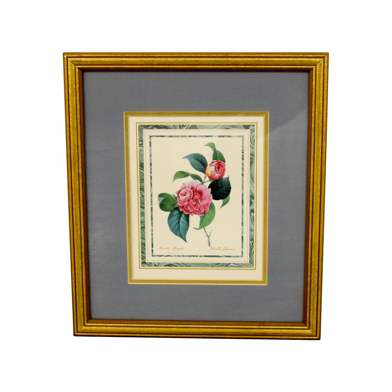 buy Scully & Scully Gold Framed Pink Botanical Print Scully & Scully Decor