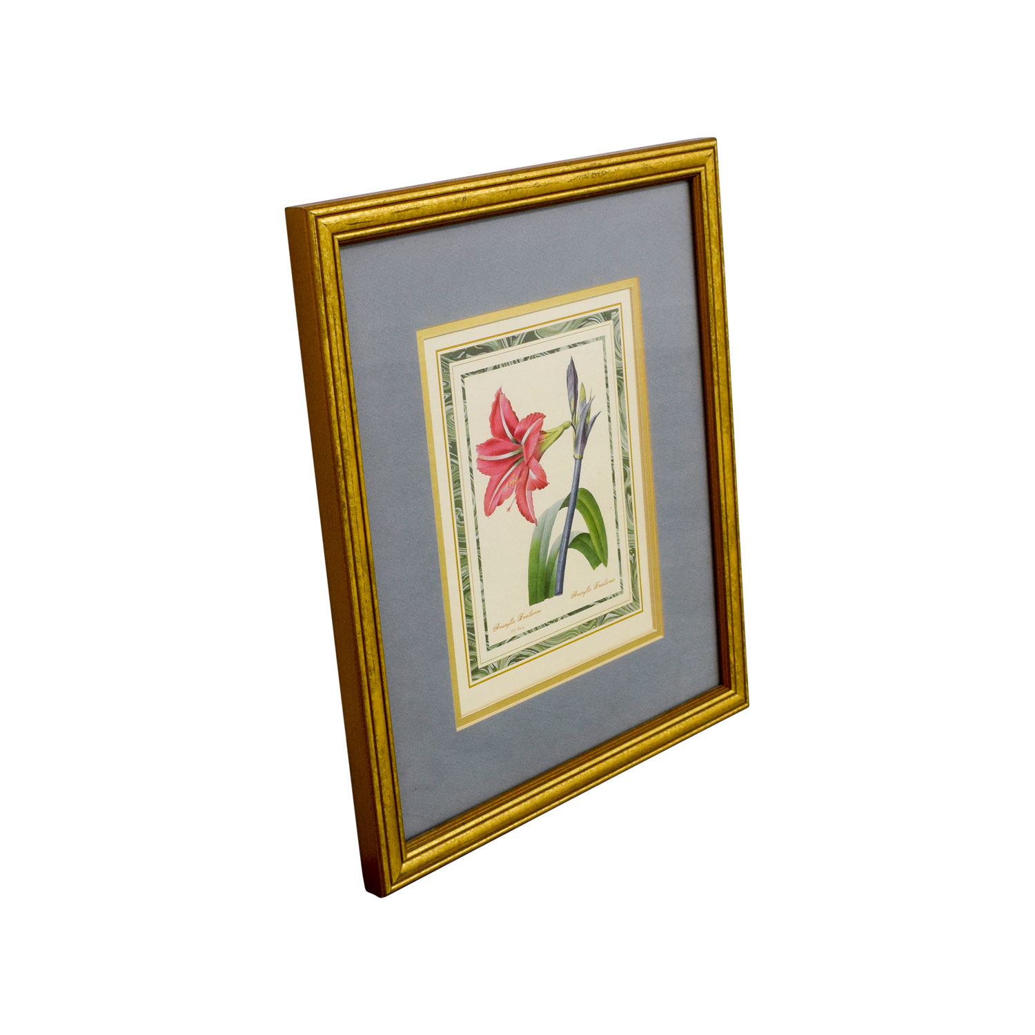 Scully & Scully Scully & Scully Gold Framed Botanical Print for sale