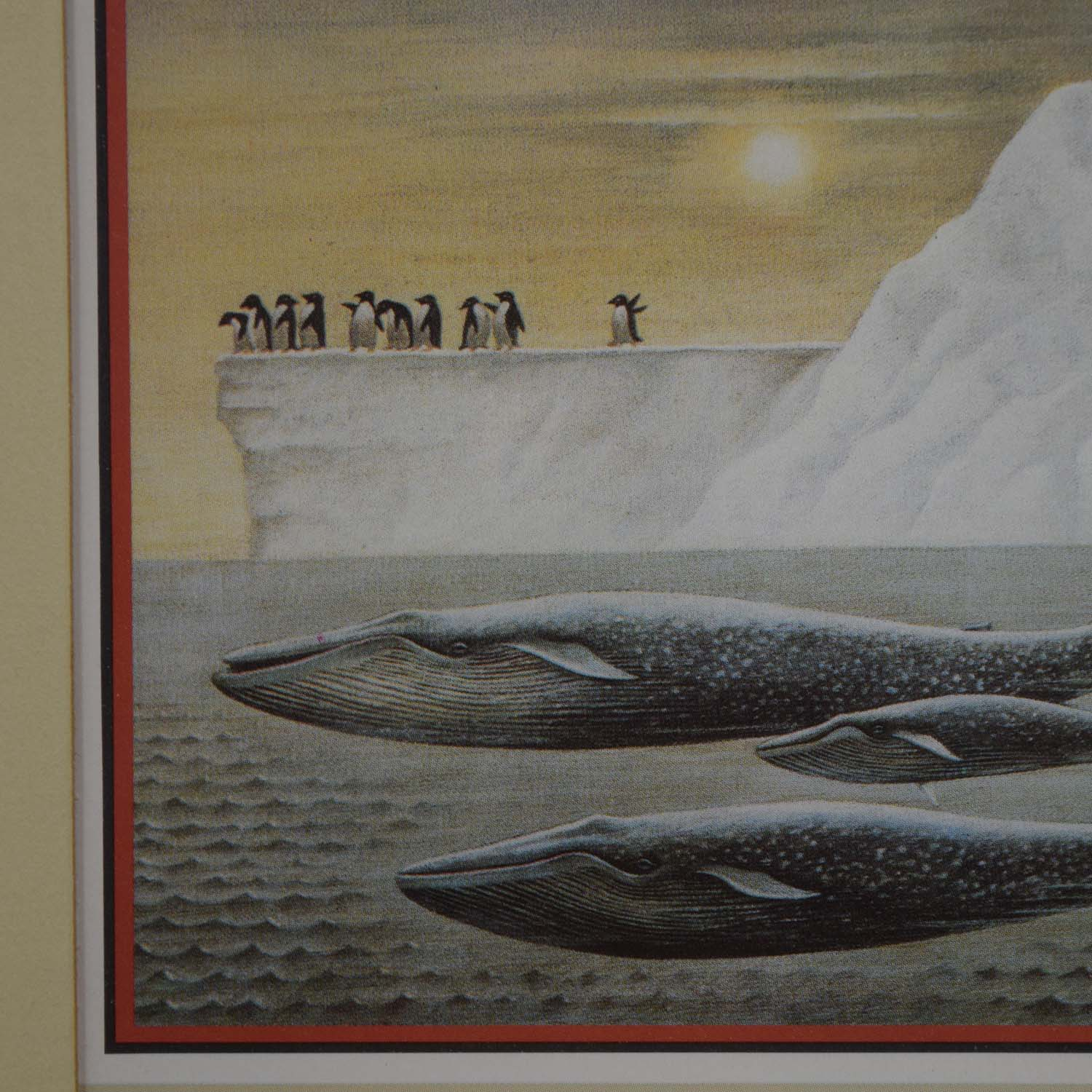 Portal Productions, Ltd. Portal Productions Blue Whales Lithograph nj