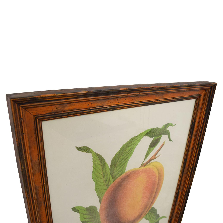 William Mackenzie Salway Peach Framed Print price