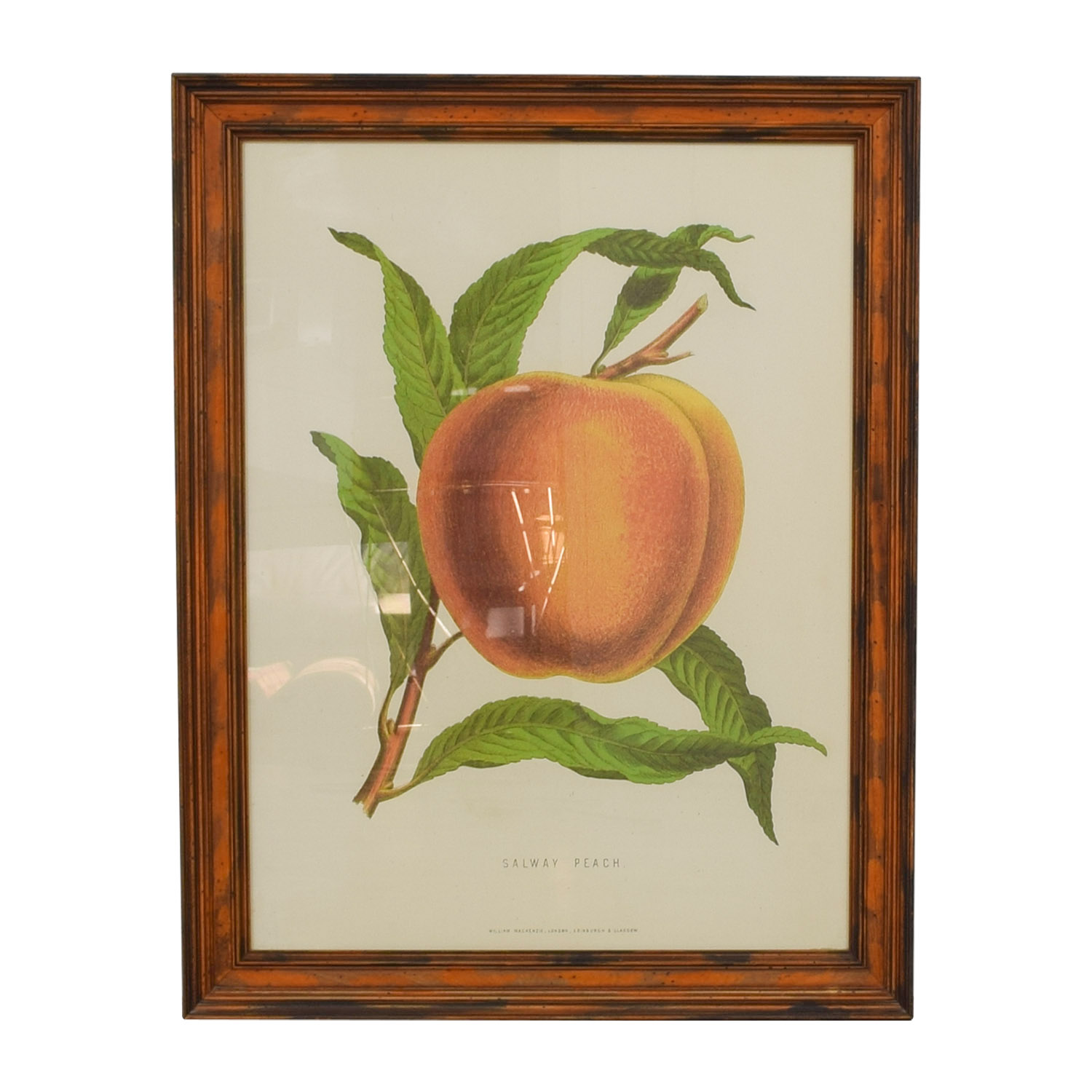 William Mackenzie Salway Peach Framed Print discount