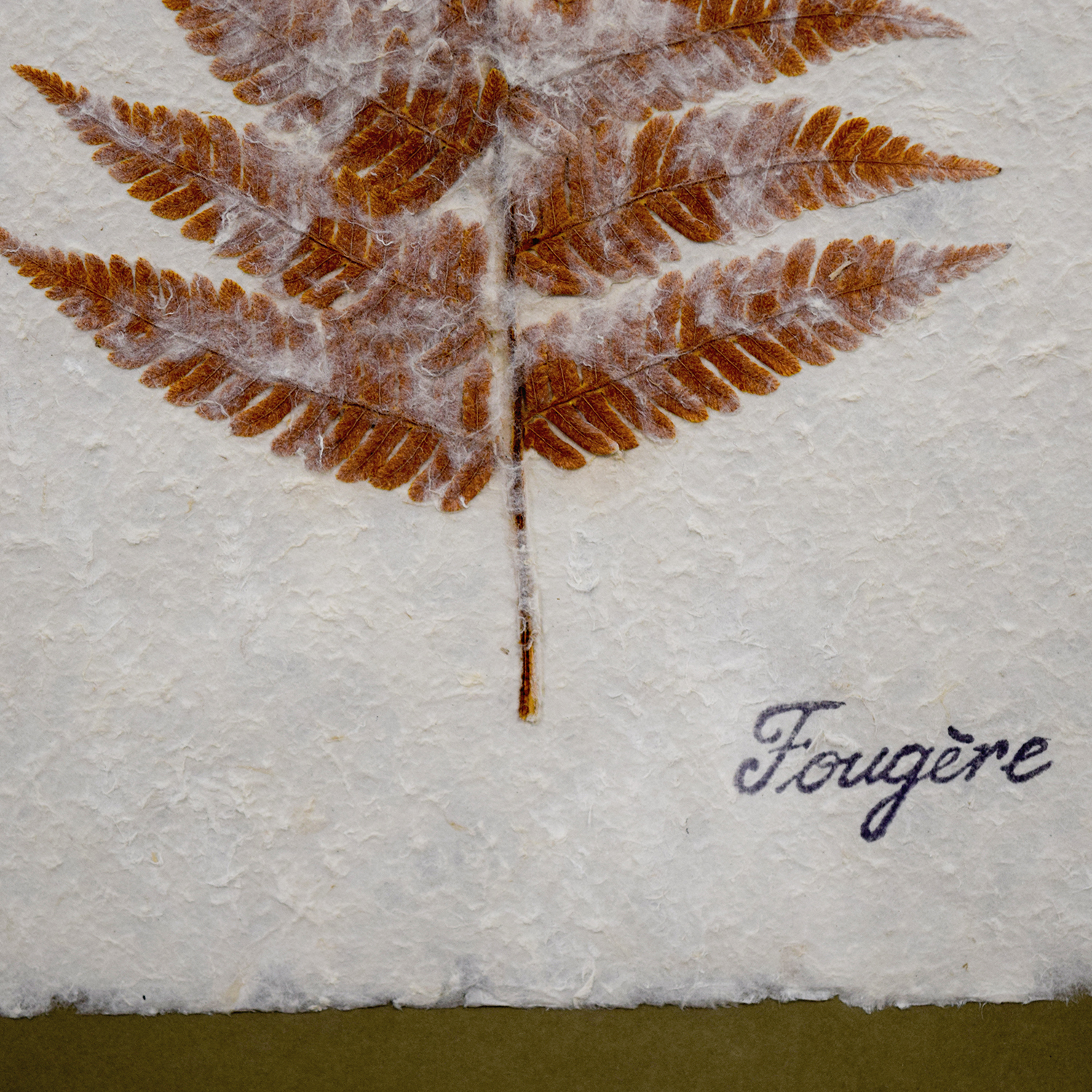 buy Fougere Silver Leaf Prints online
