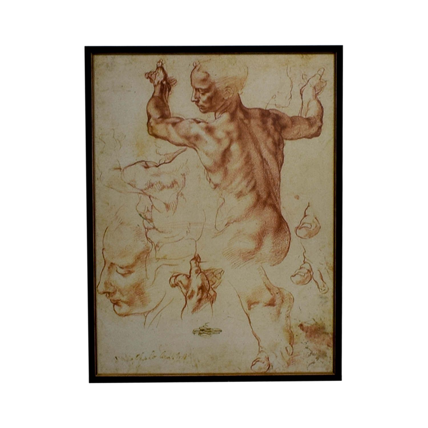 The Framing Workshop The Framing Workshop Leonardo da Vinci Sketch Poster discount