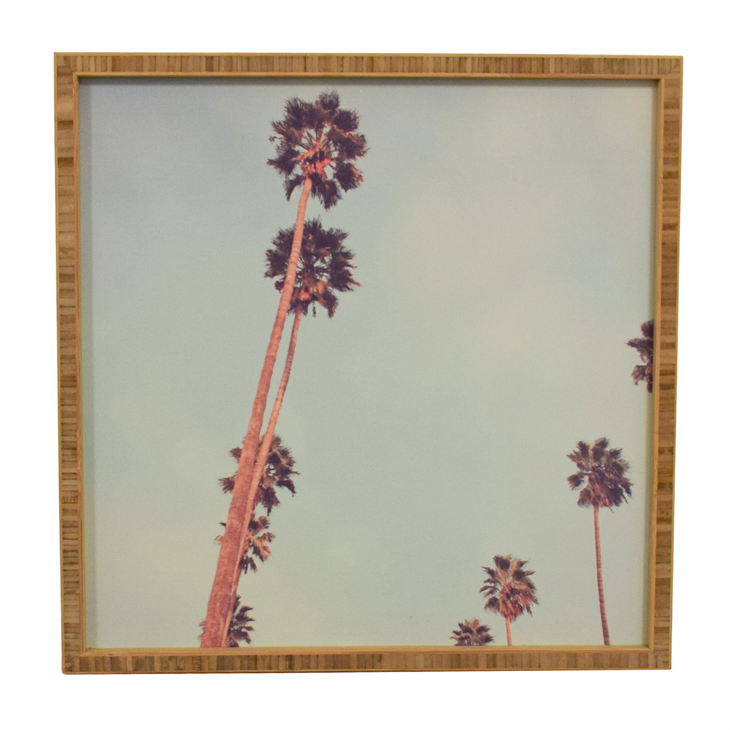 Oliver Gal Oliver Gal Framed Palm Tree Print price