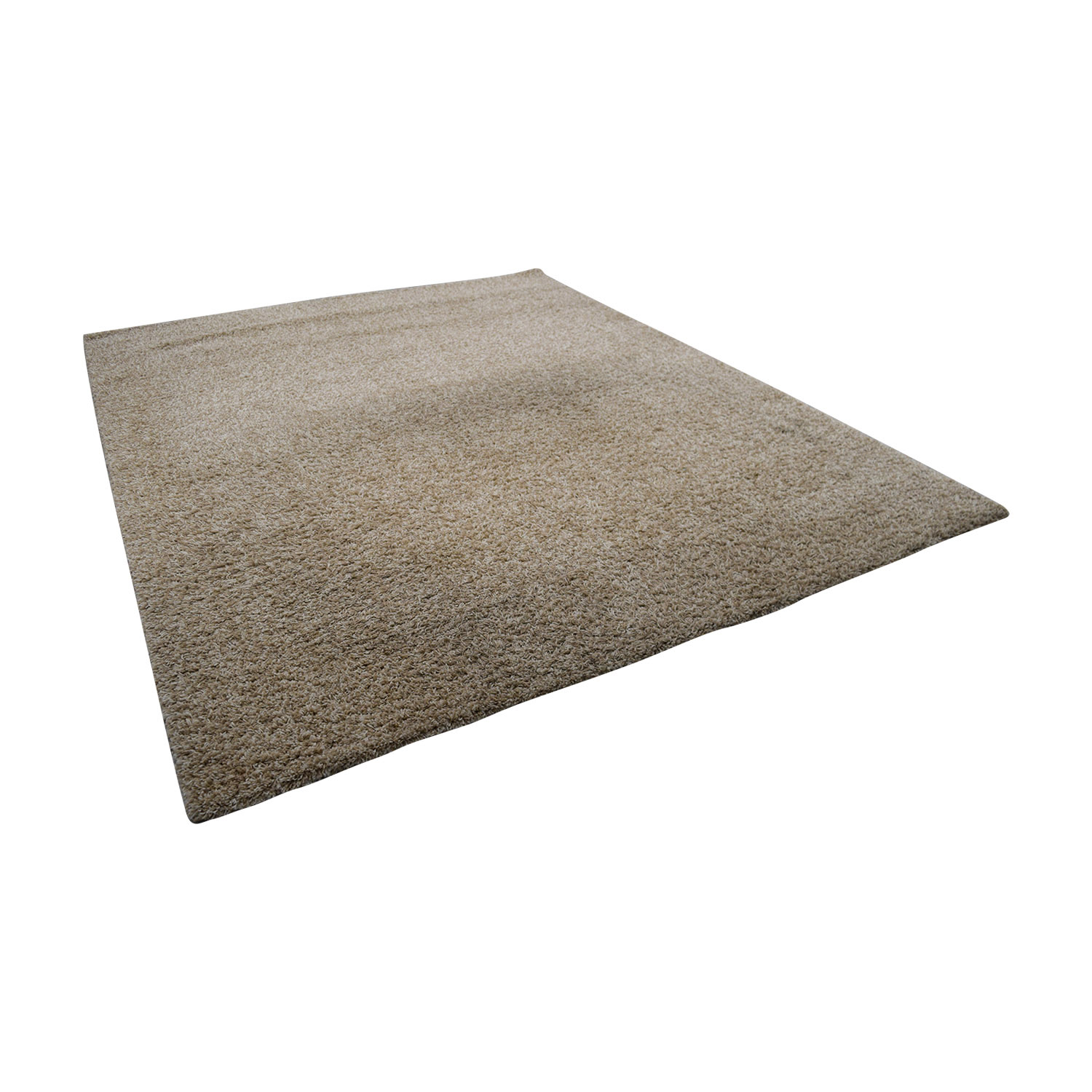 Beige Shag Rug / Decor