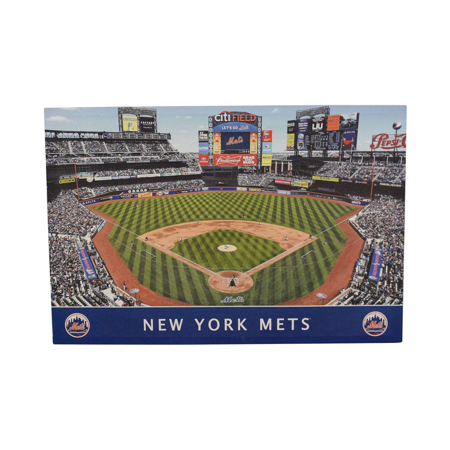 shop MLB New York Mets Stadium Team Print MLB Decor