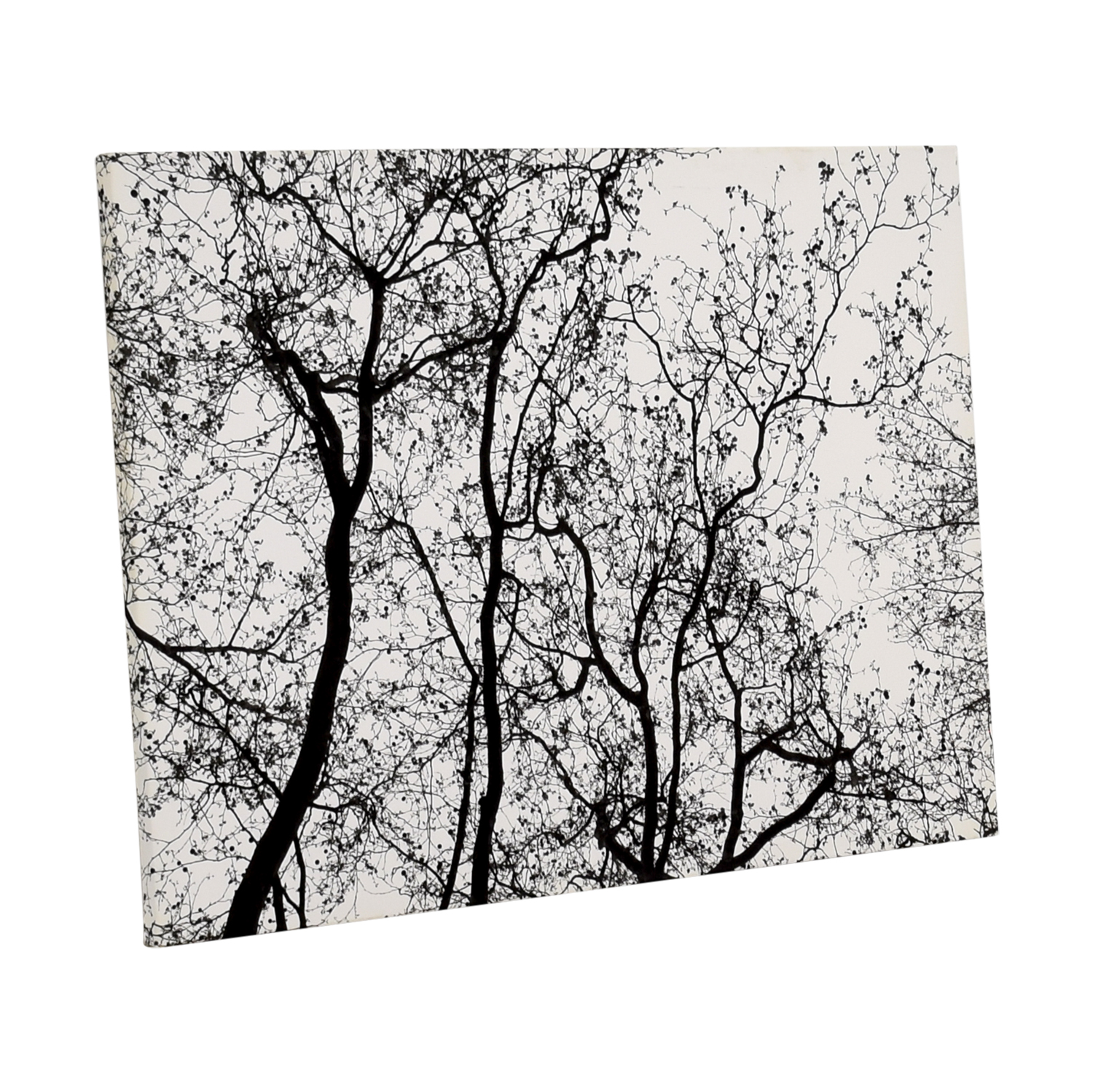 Modern Black and White Tree Branches Canvas
