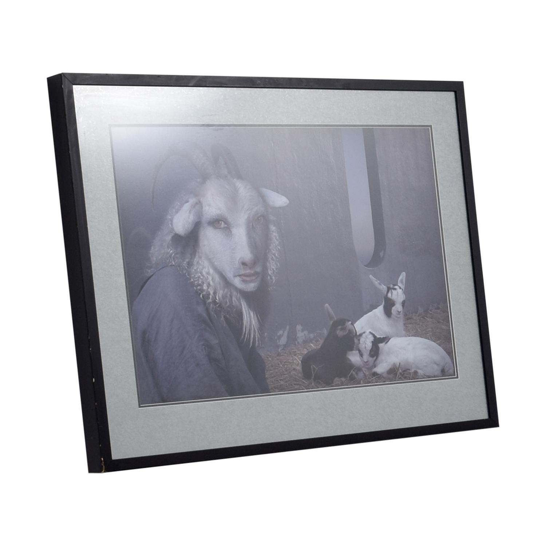 Daniel Lee Shepard Framed Print sale