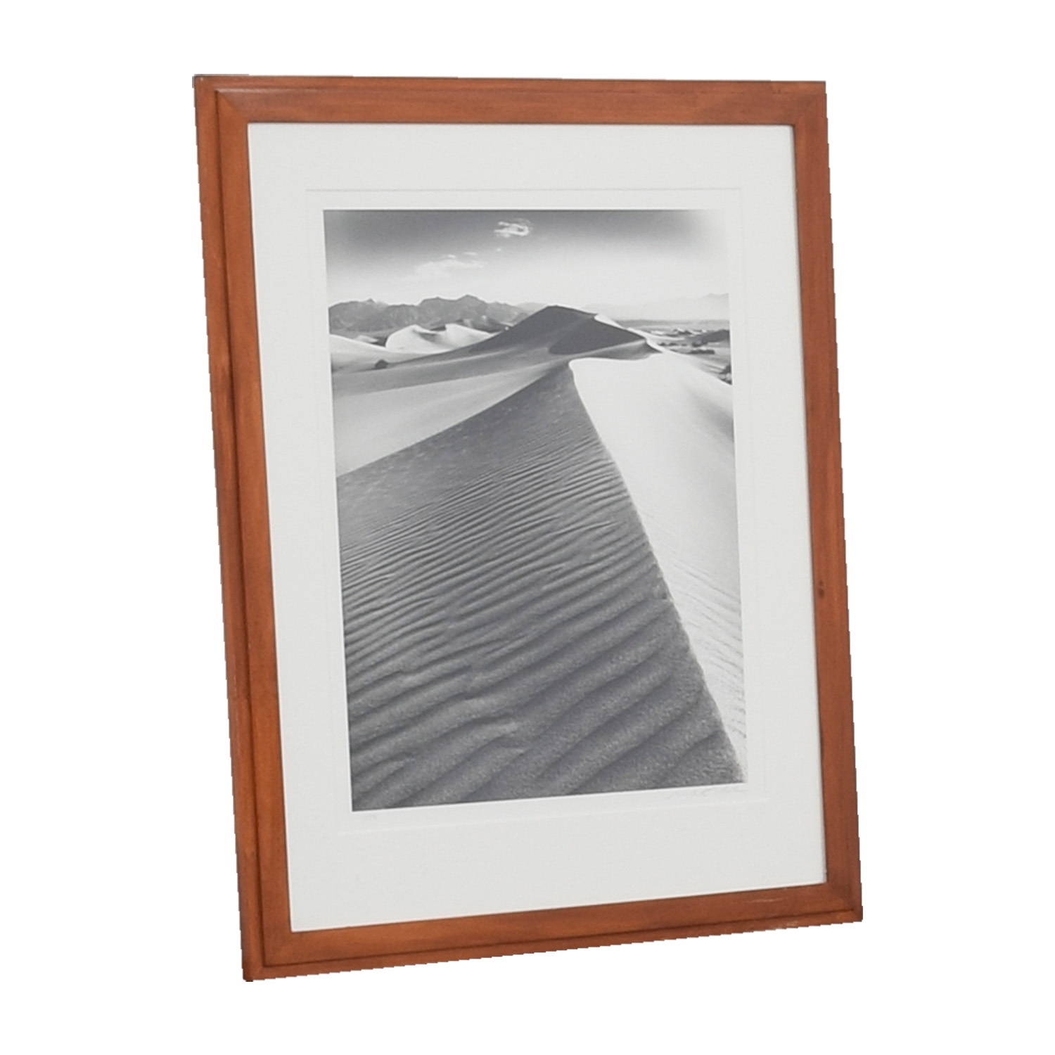 Desert Sand Framed Artwork on sale