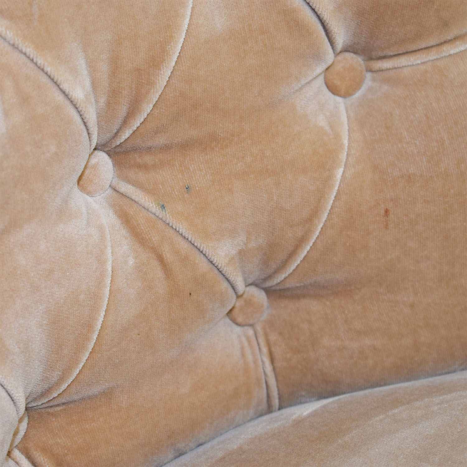 Tan Tufted Velvet Chairs used