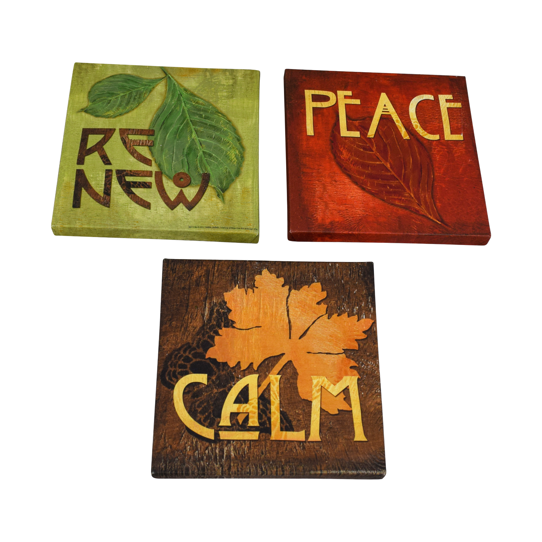 Wayfair Renew Peace Calm Canvas Wall Art used