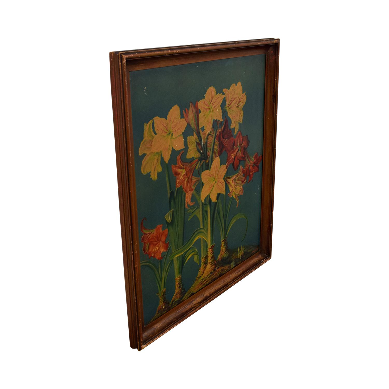 W.Gasch W. Gasch Vintage Amaryllis Print dimensions