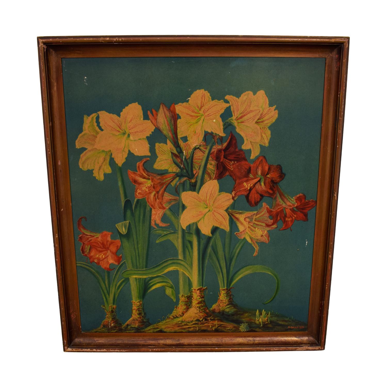 shop W. Gasch Vintage Amaryllis Print W.Gasch