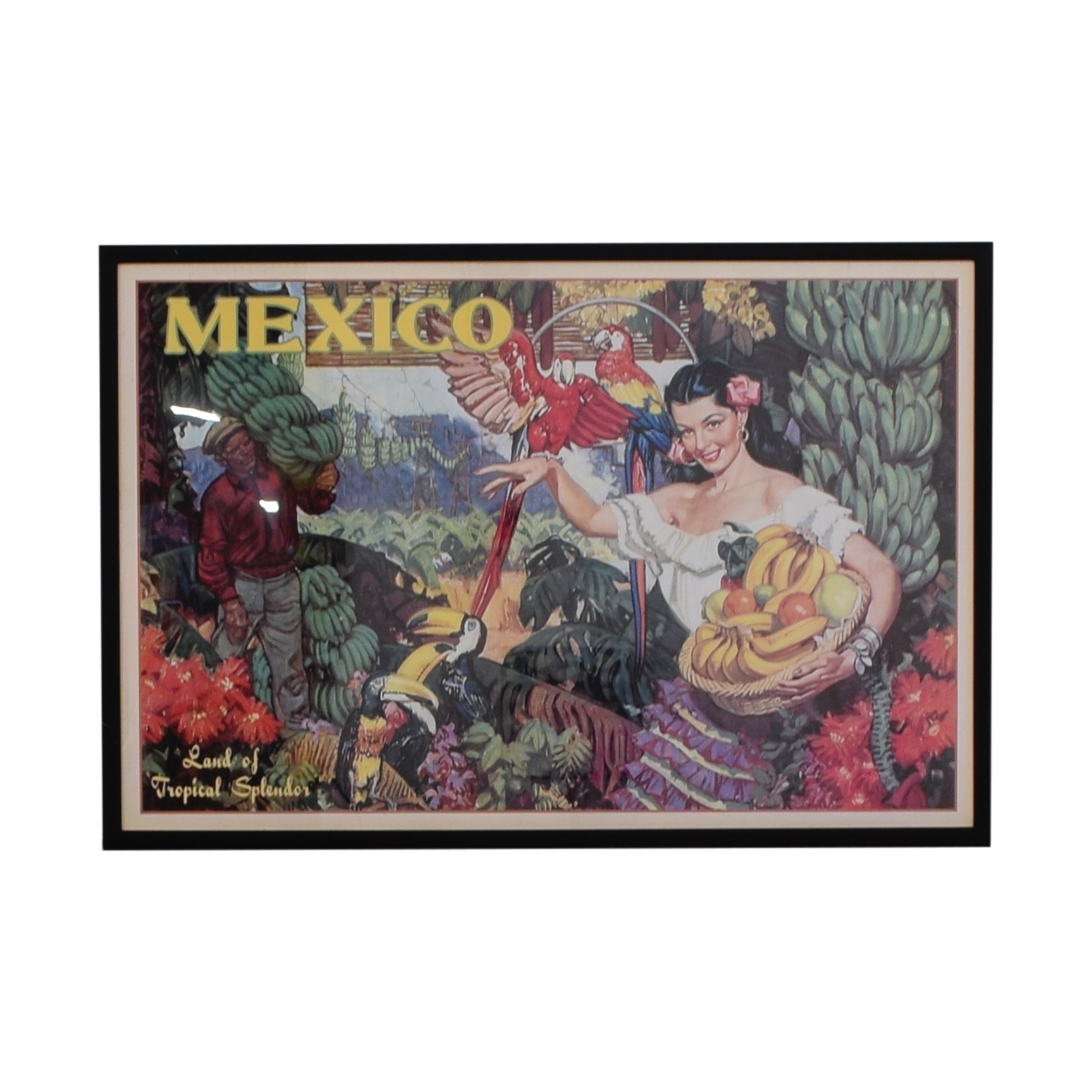 buy Vintage Apple Collection Mexico Travel Advertisement Wall Art Vintage Apple Collection Wall Art