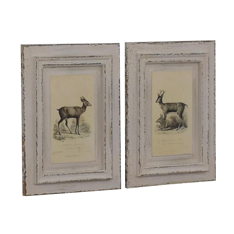shop A&G Merch Rustic White Framed Deer Wall Art Set A & G Merch