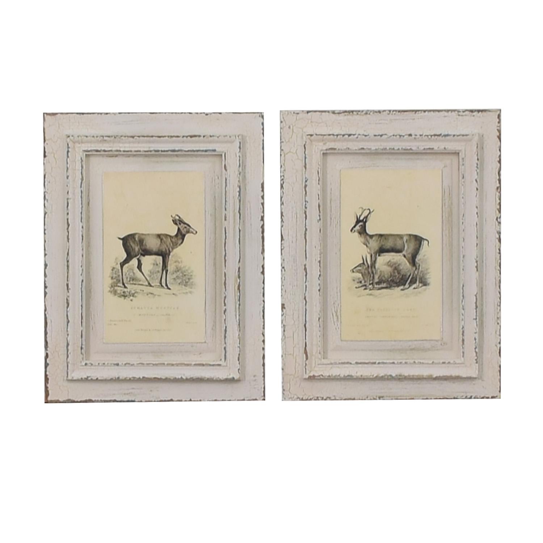 A&G Merch Rustic White Framed Deer Wall Art Set / Wall Art
