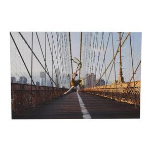Anne Wu Commissioned Dancer in Manhattan Portrait price