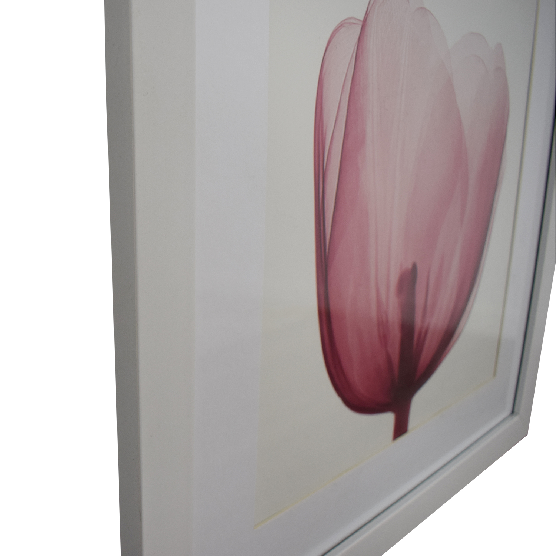 shop West Elm Pink Tulip Wall Art West Elm