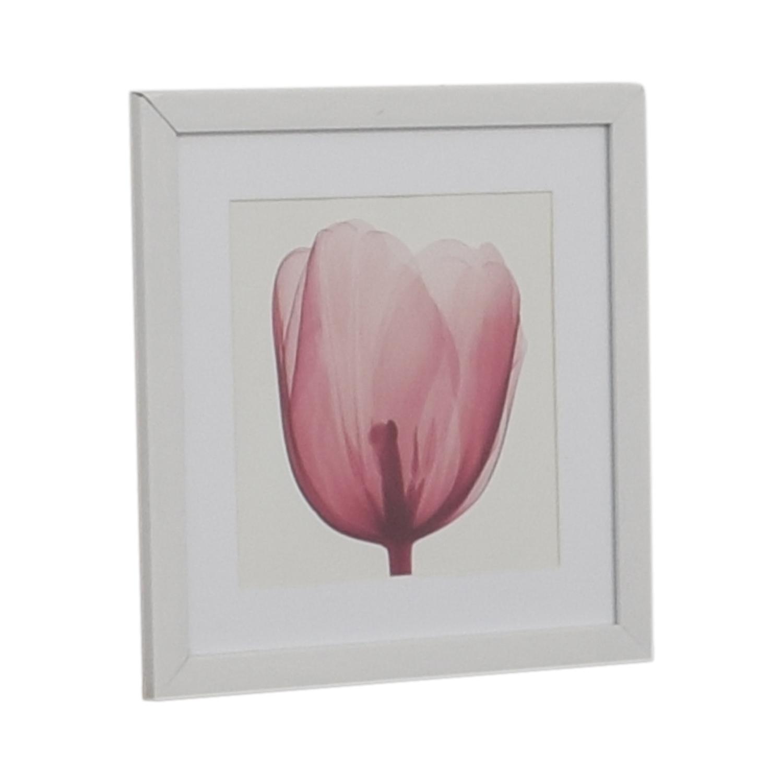 West Elm West Elm Pink Tulip Wall Art Wall Art