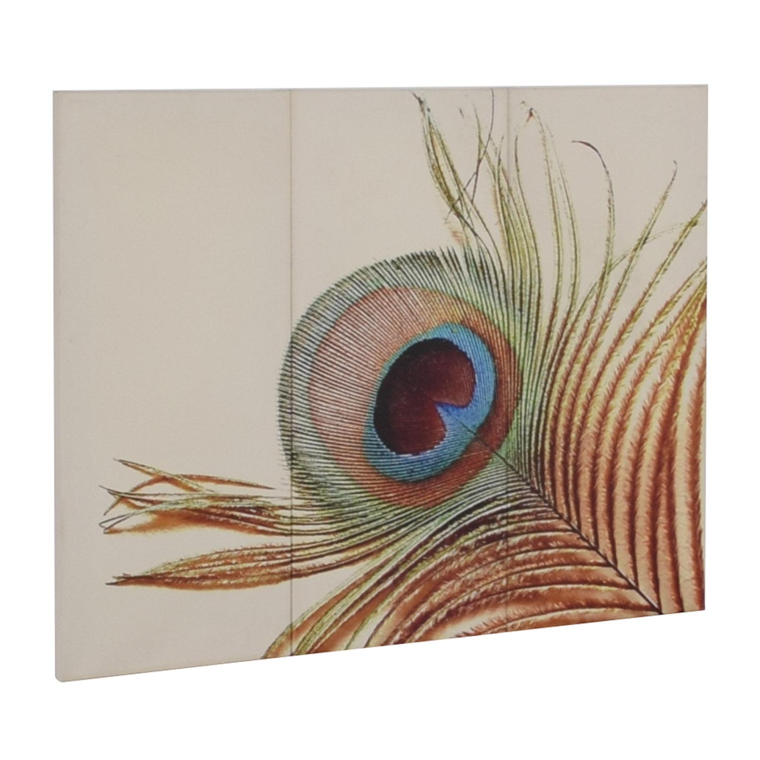 buy Peacock Triptych Canvas  Wall Art