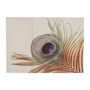 Peacock Triptych Canvas discount