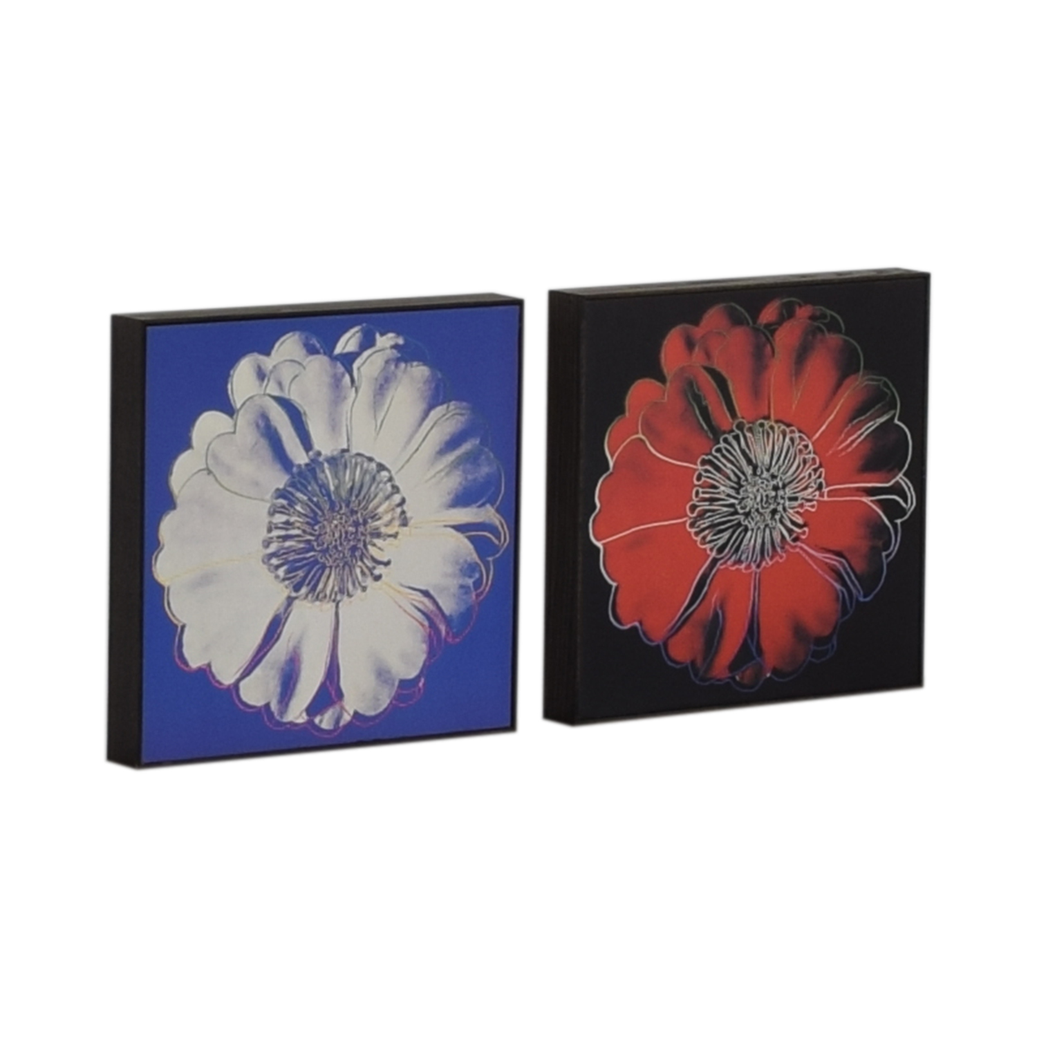 Andy Warhol Framed Flower Prints second hand