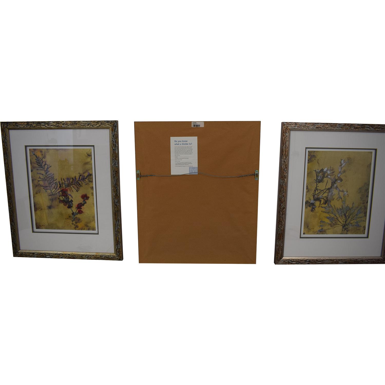 buy Ethan Allen Botanical Framed Prints Ethan Allen