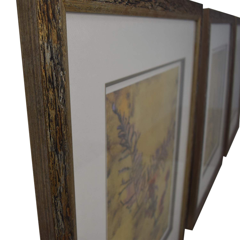 Ethan Allen Ethan Allen Botanical Framed Prints used
