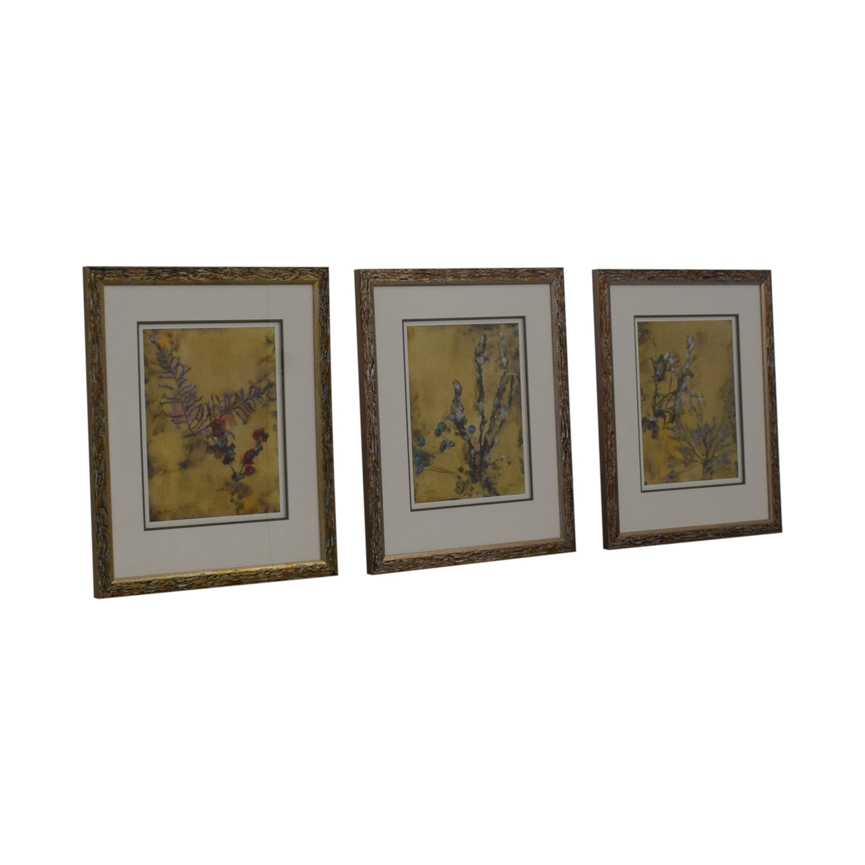 Ethan Allen Ethan Allen Botanical Framed Prints price