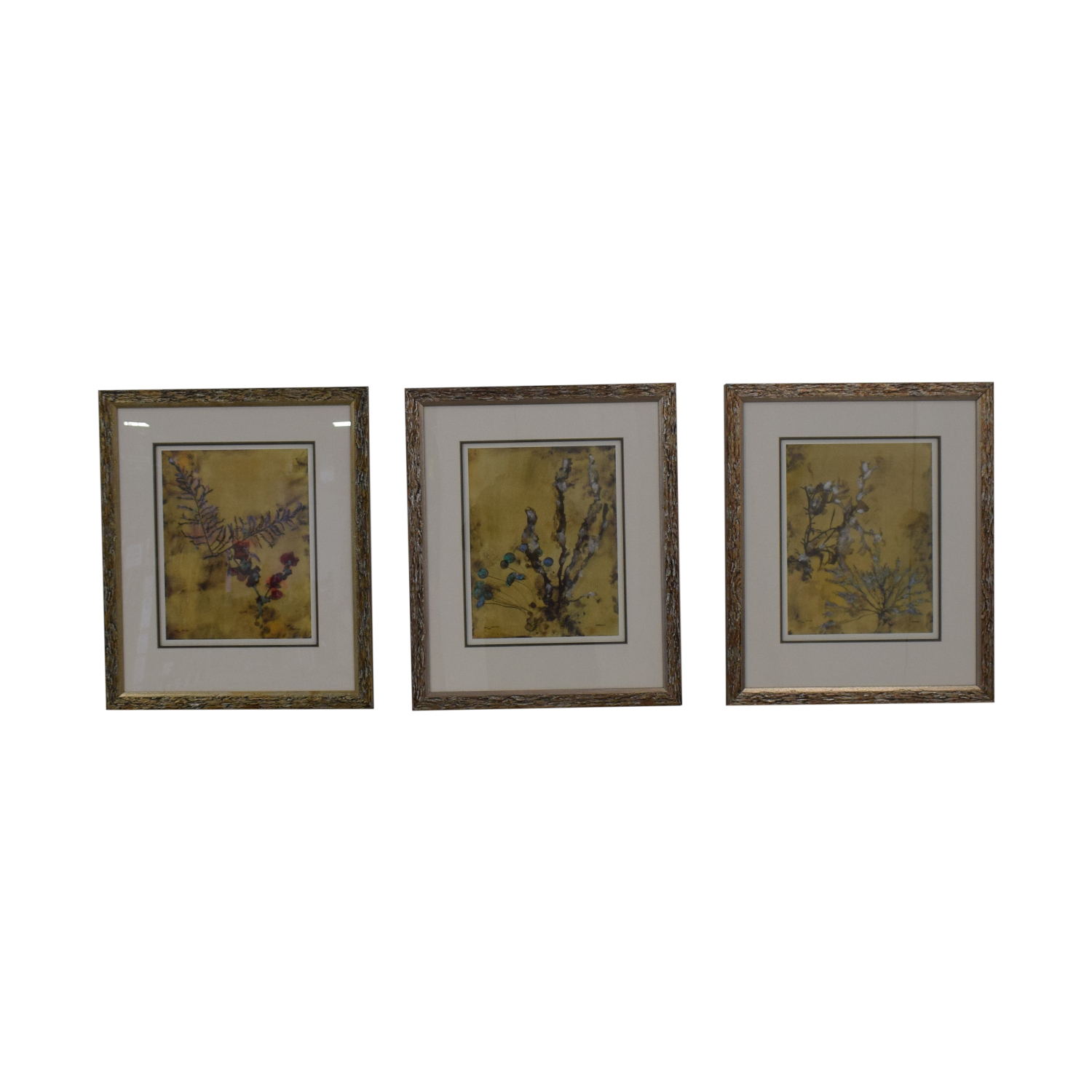 Ethan Allen Ethan Allen Botanical Framed Prints nj
