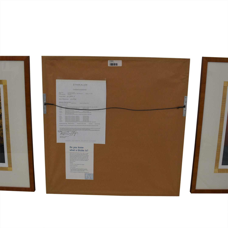 Ethan Allen Ethan Allen Framed Prints used