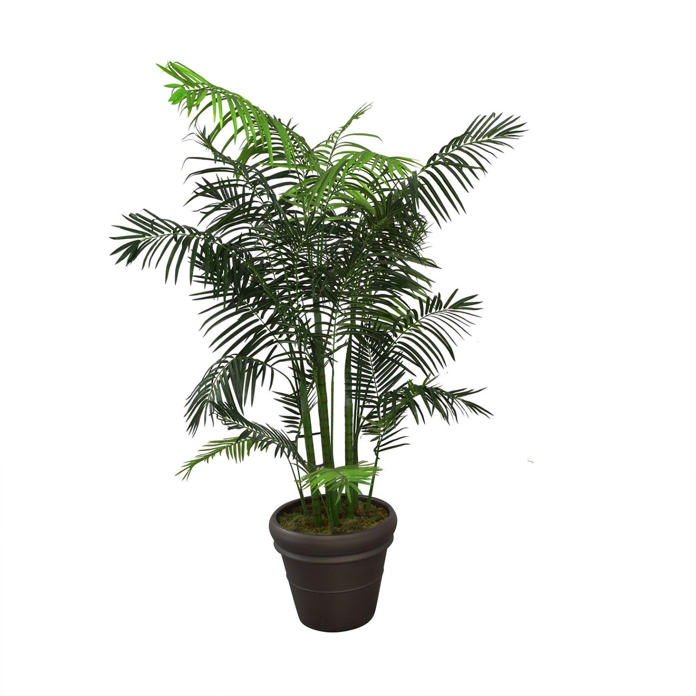 buy Ethan Allen Areca Palm Tree Ethan Allen Decor
